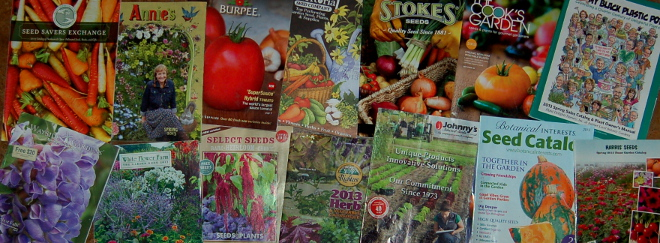 Reading between the lines of plant catalogs