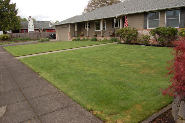lawn ecological desert