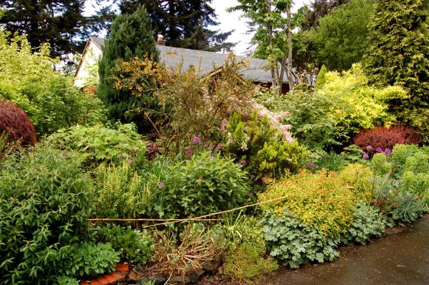 thomas vetter garden