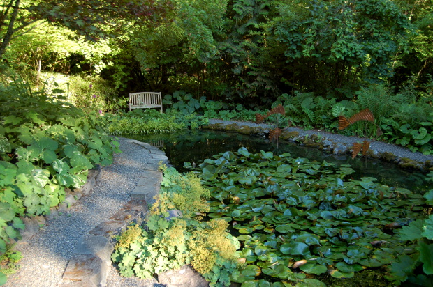 old germantown gardens koi pond with bench