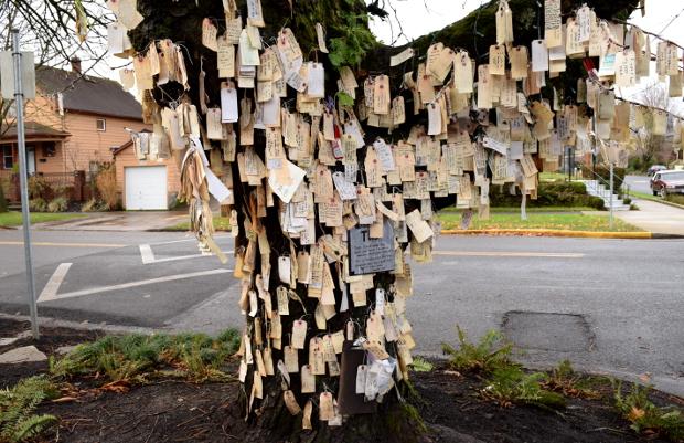 portlands wishing tree 120614 007