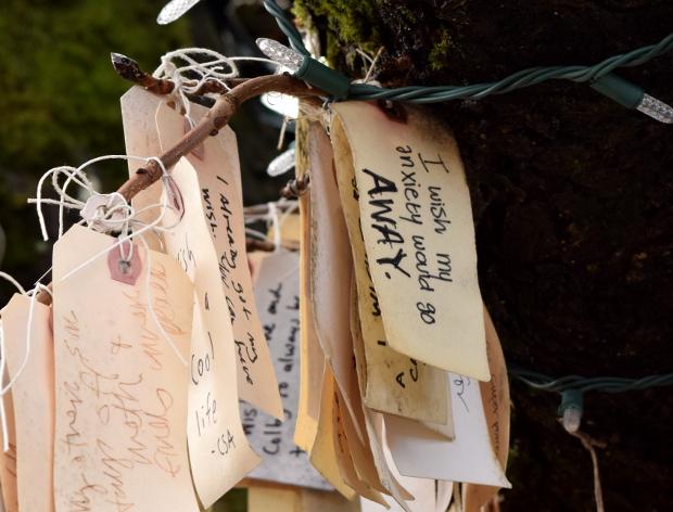wish on portlands wishing tree anxiety 120614 021