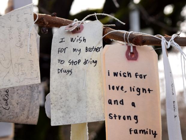 wish on portlands wishing tree brother drugs 120614 041
