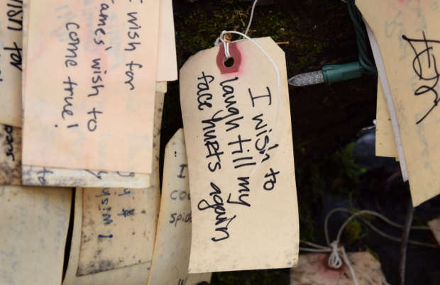 wish on portlands wishing tree laugh til face hurts 120614 049