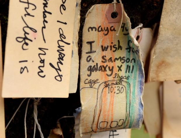 wish on portlands wishing tree samsung galaxy 120614 055