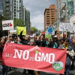 Separating GMO Fact from Fiction: A Crash Course