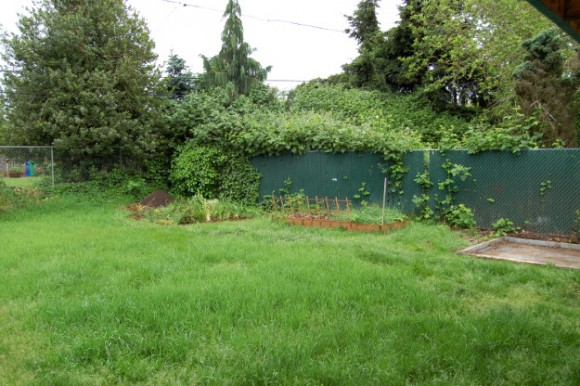 backyard landscaping ideas and before and after photos chain link before 060614 035