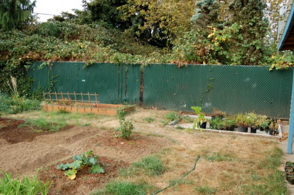 backyard landscaping ideas and before and after photos chain link section before 091814 008