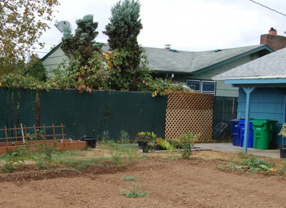 backyard landscaping ideas and before and after photos chain link section lattice 091814 025