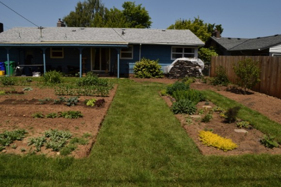 backyard landscaping ideas and before and after photos grass path after 050315 070