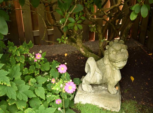 formal garden 18 in maintenance path 082215 320