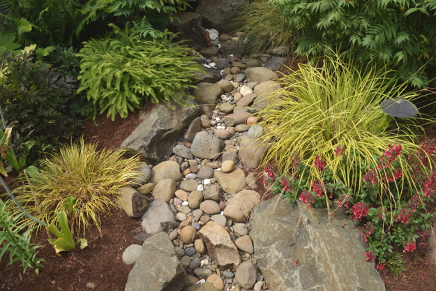 ANLD garden tour king dry creek bed 060816 168