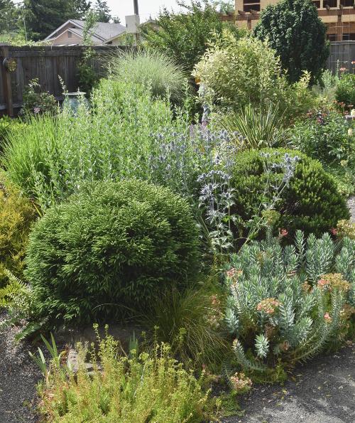 ANLD garden tour langeliers textures 060816 106