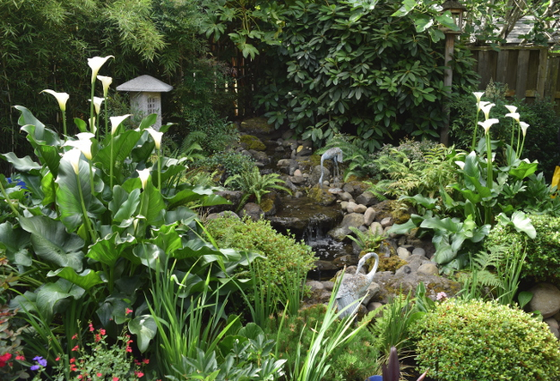 ANLD garden tour wagner water feature 060816 11
